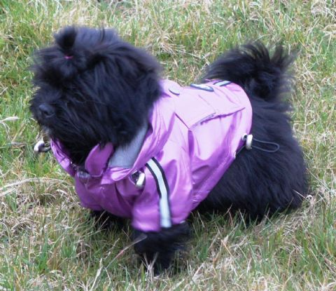 ANCOL CUTE DOG COAT PINK WITH DETACHABLE HOOD XXS XS S